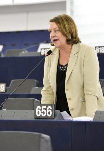 Plenary session week 19 2016 in Strasbourg - Restoring a fully functioning Schengen system